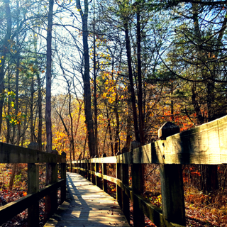 autumn leaves around Rock Bridge State Park boardwalk trail