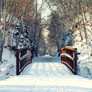 snow covered trail bridge in Columbia, MO