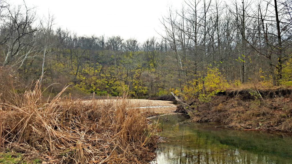 fall colors and creek at grindstone nature area