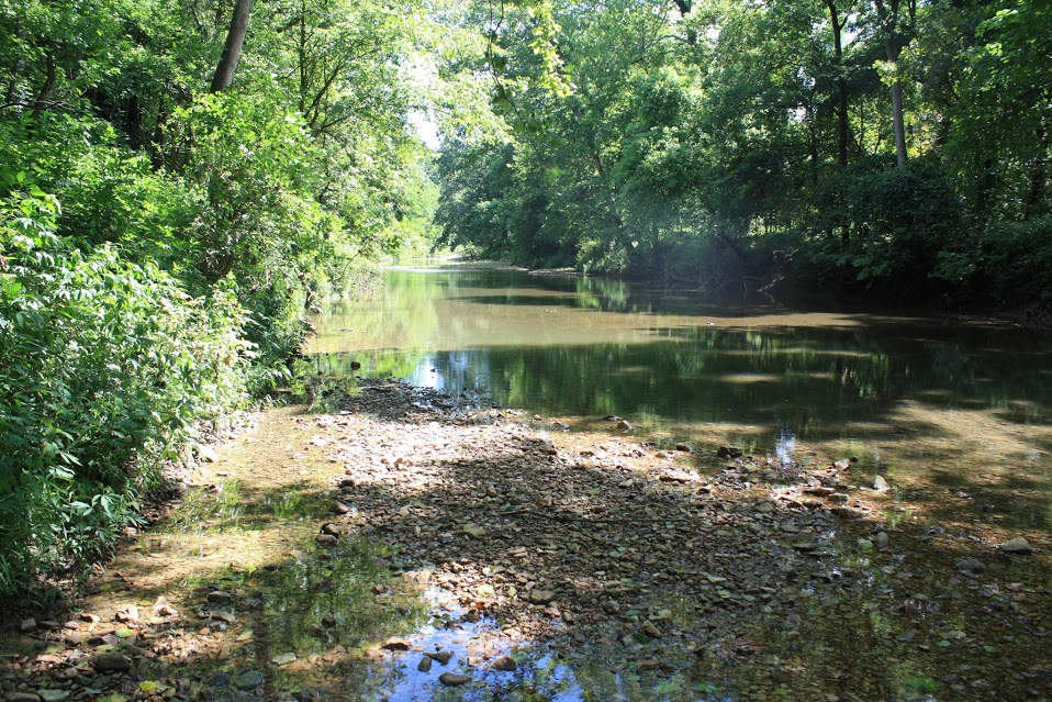 Three Creeks Conservation Area - Columbia Convention and