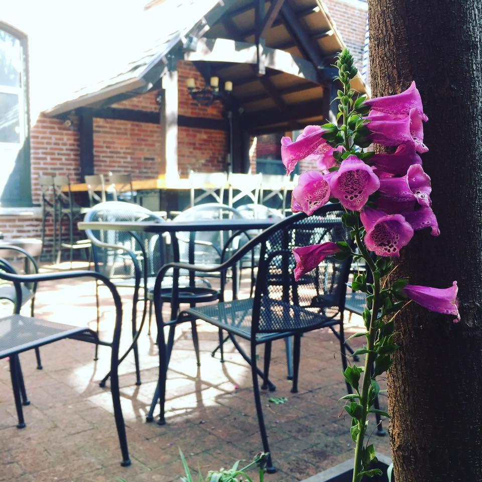 the patio at Gunter Hans