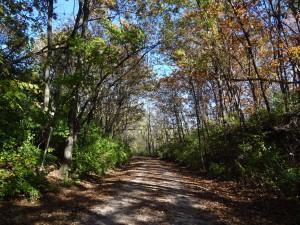 MKT Trail