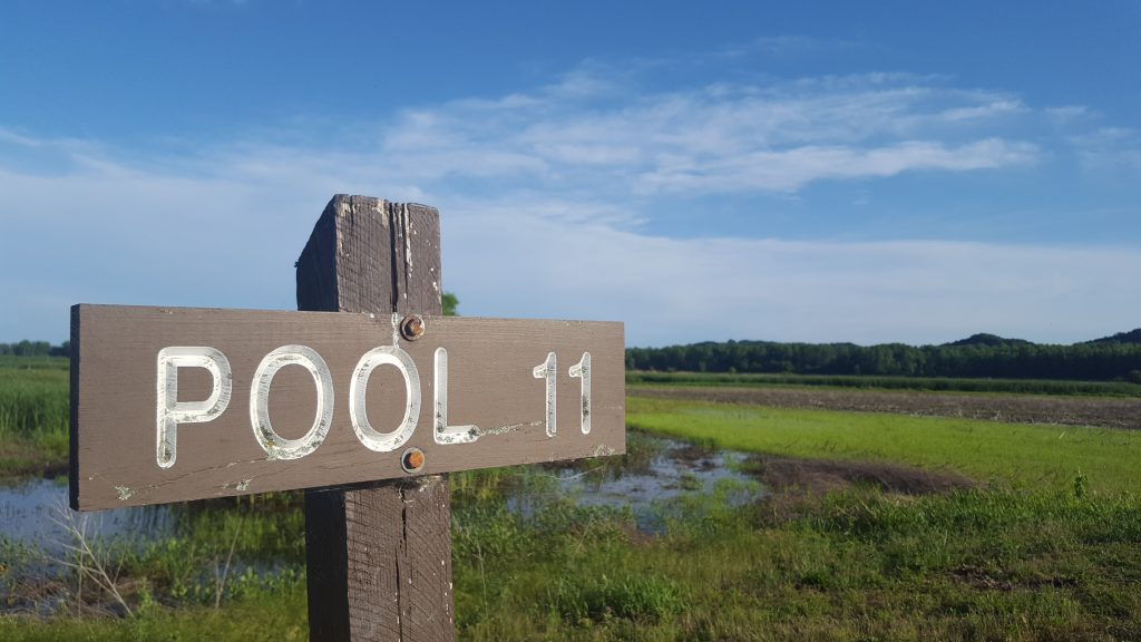 Eagle Bluffs 'pool 11' sign