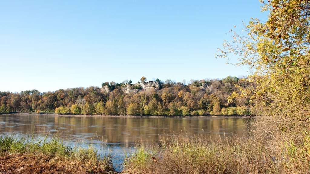 Eagle Bluffs Conservation Area Columbia Convention And