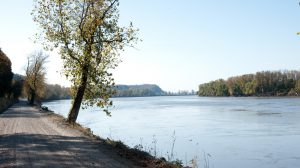 Katy Trail State Park running along the Missouri River